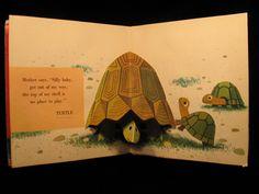 Turtles illustration