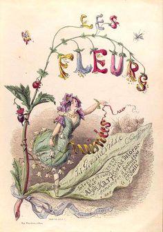 Art-Botanical-Illustration-Grandville-Les-Fleurs-title-page.jpg 511×728 pixels