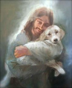 Jesus walked the earth as a man.The Bible don't say but I'll bet He had … Jesus walked on earth as a human being. The bible says nothing, but I bet he had a dog too Love My Dog, Dog Heaven Quotes, Dog Quotes, Funny Quotes, Animals And Pets, Cute Animals, Images Bible, Pet Loss Grief, Pictures Of Jesus Christ