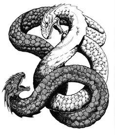The amphisbaena is a mythological, ant-eating serpent with a head at each end. || L'anfesibena o anfisbena è un mitico serpente dotato di due teste, una ad ogni estremità del corpo, e di occhi che brillano come lampade. || L'antro della magia http://antrodellamagia.forumfree.it/?t=68415709