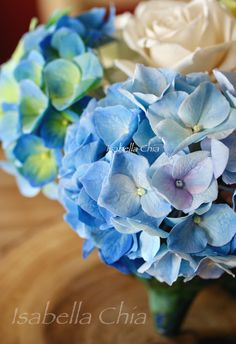 Hydrangeas made with cold porcelain clay