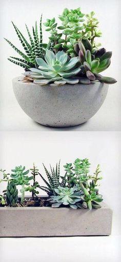 7 ideas para decorar con suculentas [Summer edition] | Decorar tu casa es facilisimo.com