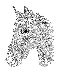 721 Best Color Pages Images In 2019 Coloring Pages Adult