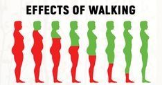 """Have you ever heard the saying by Hippocrates, """"Walking is a man's best medicine?"""" We'd go further by stating that walking combined with good sleep and a healthy diet can help you avoid the doctor altogether. As little as minutes of walking every For Your Health, Health And Wellness, Health Fitness, Mental Health, Health Benefits Of Walking, Walking Everyday, Lower Belly Fat, Flat Belly, Lose Belly"""