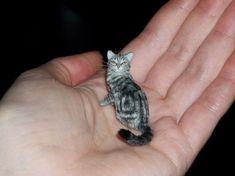 Realistic Handmade Dollhouse Miniature Tabby Cat Sculpture Pet OOAK 1:12 TMD