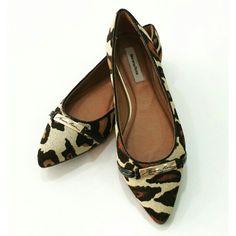 Sapatilha Bico Fino Onça w/ Placa MR  | Morena Rosa Shoes  ♡ Disponível TAM. 35 / 36 / 37 / 38     ••》Whatsapp 43 9148-2241  ☎  43 3254-5125.    Rua Rio Grande do Norte, 19 Centro - Cambé-Pr  #venhaseapaixonar #euqueroo #fashionistando #carolcamilamodas #news #Verão16 #musthave #onça #shoesfashion #shoes #mrshoes #morenarosashoes #summerlovers