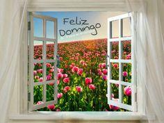Feliz Domingo  @trazosenelcorazon