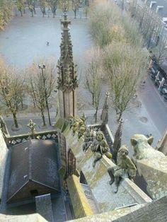 Parade vanaf de kathedrale basiliek van St. Jan de evangelist te 's-Hertogenbosch