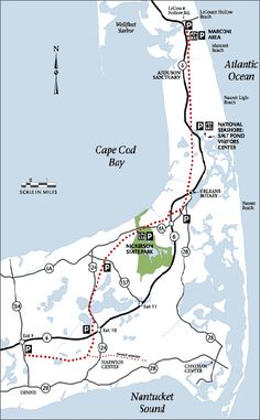 Biking the Cape Cod Rail Trail, from Dennis to Wellfleet: a scenic 25 mile bike ride through lakes, forest, and beaches. Cape Cod Rail Trail, Cape Cod Bay, Cape Cod Vacation, Bike Path, Road Bike, Bike Trails, Nantucket, The Great Outdoors, New England