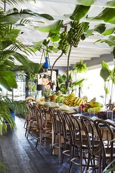 Mother and Daughter duo, Byron Bay, Australia. Tropical Party, Tropical Vibes, Beach Dinner Parties, Havana Party, Coffee Shop Interior Design, Wedding Canopy, Outdoor Wedding Decorations, Holidays And Events, Event Decor