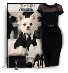 """""""Chi Love"""" by debraelizabeth ❤ liked on Polyvore featuring Jimmy Choo and Yves Saint Laurent"""