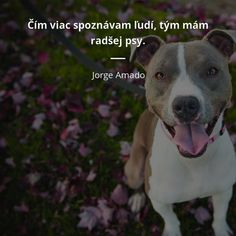 Truths, Poetry, Dogs, Quotes, Life, Animals, Quotations, Animales, Animaux