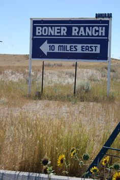 Happy Happy Hump Day!!!   Can you guess what they do on Hump Day at Boner Ranch, located conveniently on Boner Road?