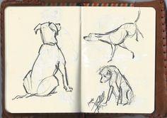 Estudio Perros http://cuadernosdepintor.blogspot.com.es/