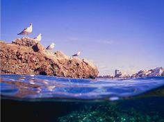 Playa de #LasCanteras #GranCanaria #IslasCanarias