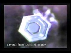 The video includes versions of the experiment you can do yourself;and adults too. :o) Dr Masaru Emoto Hado Water Crystals Full Documentary Masaru Emoto Water, Water Experiments, Everything Is Energy, After Life, Body And Soul, Sacred Geometry, Consciousness, Light In The Dark, Awakening