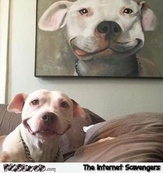 Funny dog posing next to his portrait – Hilarious dog pictures @PMSLweb.com
