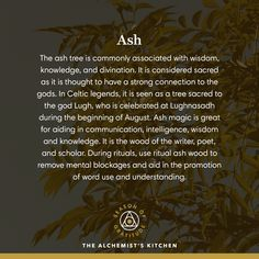 We are dedicated to connecting you with the power of plants by providing fine herbal remedies, cbd, botanical medicines, and whole plant tinctures. Herbal Tinctures, Herbalism, Herbal Remedies, Natural Remedies, Wiccan Sabbats, Magic Herbs, Types Of Herbs, Practical Magic, Healing Herbs