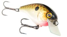 This crankbait has excellent deflection properties and a unique belly hook hanger