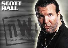 Nwo Wrestling, Scott Hall, Kevin Nash, Fictional Characters, Collection, Fantasy Characters