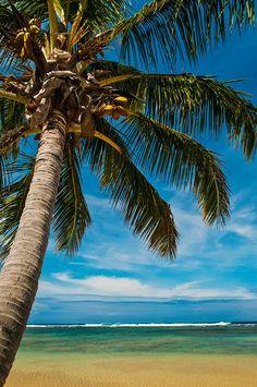 October Vacation! Evan and I were engaged on this island, we are excited to return! Na Pali Coast, KAUAI, Hawaii Anini Beach, Kauai, Hawaii
