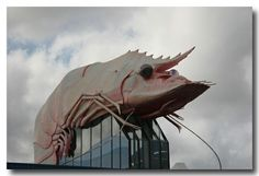 The Big Prawn....over a fish & chip shop in Ballina, NSW by marta