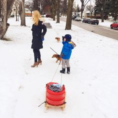 Family Sled, Instagram Posts, Lead Sled, Luge