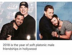 Sebastian Stan, Chris Evans, Tom Hiddleston, and Chris Hemsworth