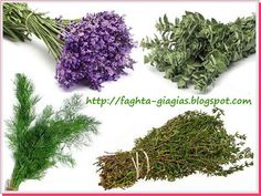 Πότε και πως συλλέγουμε βότανα και αρωματικά φυτά - επεξεργασία και αποθήκευση ⇒ από «Τα φαγητά της γιαγιάς» Vegetable Garden, Garden Plants, Natural Teething Remedies, Holistic Medicine, Alternative Treatments, Botany, Gardening Tips, Health And Beauty, Herbalism