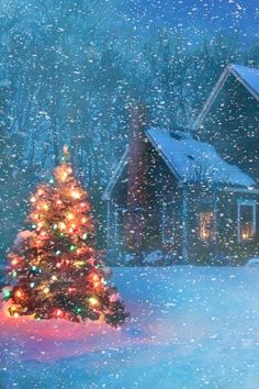 Christmas Tree Ideas - A Light in the Darkness. Beautiful Christmas Tree on a Snowy Evening Winter Land. Merry Little Christmas, Noel Christmas, Country Christmas, Vintage Christmas, Outdoor Christmas, Snowy Christmas Scene, White Christmas Snow, Colored Christmas Lights, Christmas Berries
