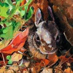 """Arizona Cottontail"" x Original Oil Painting by Kristy Tracy Rabbit Breeds, Watership Down, Bunny Art, Autumn Art, Woman Painting, Fine Art Gallery, Art Studios, Art For Sale, Bunnies"