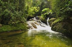 A caminho da Cachoeira Toca da Raposa Maromba - RJ