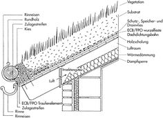 Grünes Dach: Detail B.6