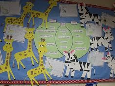 great display for compare and contrast