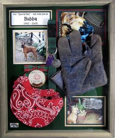 Pet memorial shadow box! Don't want to think about it but such a cute idea #DogMemorial