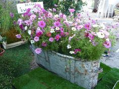Container gardening is a fun way to add to the visual attraction of your home. You can use the terrific suggestions given here to start improving your garden or begin a new one today. Your garden is certain to bring you great satisfac Container Flowers, Container Plants, Container Gardening, Beautiful Gardens, Beautiful Flowers, Plantation, Garden Planters, Dream Garden, Garden Projects