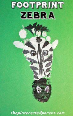 Footprint Zebra - animal footprints A - Z - Z is for zebra