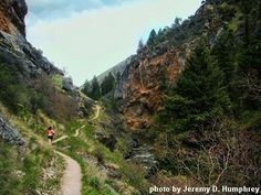 Jeremy Humphrys wife running on Rapid River Trail near the Hells Canyon Wilderness in Western Idaho terrymiller1