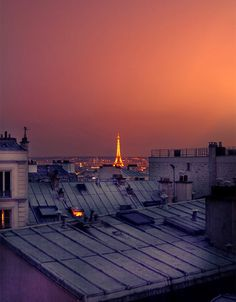 Paris from the rooftops
