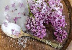 Šeřik potěší nejen oko Floral Wreath, Food And Drink, Sugar, Canning, Flowers, Beauty, Gardening, Candy, Foods