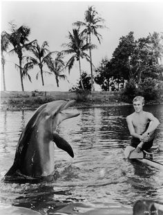 Fantastic films starring the four-legged and the finned