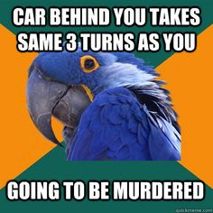 car behind you takes same 3 turns as you going to be murdered - Paranoid Parrot