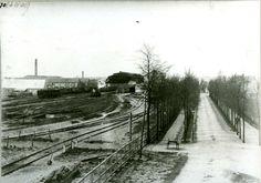Rond 1880: Gezicht op het station te Zwolle vanaf de hoge spoorbrug met de Oosterlaan. Aan de bomen is te zien dat deze nog niet zo lang is aangelegd. Op het emplacement staan enkele locomotieven met een draaischijf. Rechts is het zogenaamde Hertenlandje. De stationskap is duidelijk te zien.