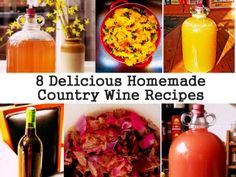 8 Delicious Homemade Country Wine Recipes - e have a friend who makes homemade wine & they do have a wonderful, different taste. Nice post on how to make your own wine. Wine And Liquor, Wine And Beer, Wine Drinks, Beverages, Alcoholic Drinks, Homemade Wine Recipes, Homemade Alcohol, Homemade Liquor, Do It Yourself Videos