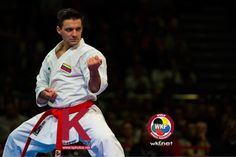 Summary of the World Karate Championships Bremen 2014