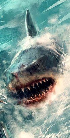 Shark Pictures, Shark Photos, Shark Books, Animals And Pets, Cute Animals, Oscar Fish, Shark Bait, Shark Tattoos, Jurassic Park World