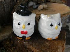 Owl cake toppers. Not very classy though.
