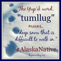 """The Yup'ik word, """"tumllug"""" means, """"deep snow that is difficult to walk in."""" by fran Tlingit, Maternity Photography, Alaska, Wisdom, Snow, Deep, Words, Languages, Arctic"""
