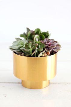 Brass Succulent Planter DIY