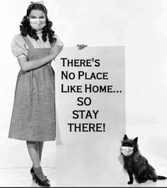 Dorothy and Toto Kermit, Funny Memes, Hilarious, Jokes, Funny Stuff, Funny Quotes About Life, Life Quotes, Goal Quotes, Crowns
